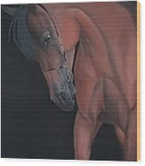 Glance Of A Horse Wood Print