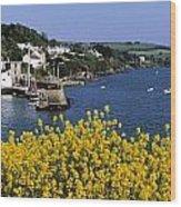 Glandore Village & Harbour, Co Cork Wood Print