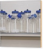 Glassware In A Microbiology Laboratory Wood Print