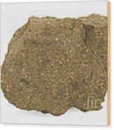 Glauconite Sandstone Wood Print