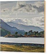 Glen Affric Panorama I Wood Print