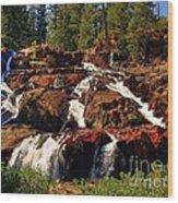 Glen Alpine Falls Wood Print by Scott McGuire