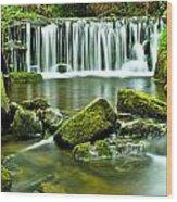 Glen Falls Wood Print