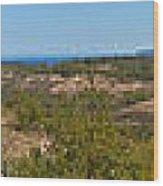 Glen Lake And Lake Michigan Wood Print
