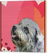 Glen Of Imaal Terrier Wood Print