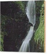 Glenariff Falls, Glens Of Antrim, Co Wood Print
