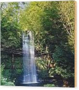 Glencar Waterfall, County Sligo Wood Print