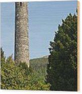 Glendalaugh Round Tower 10 Wood Print