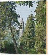 Glendalaugh Round Tower 11 Wood Print