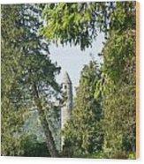 Glendalaugh Round Tower 12 Wood Print