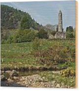 Glendalaugh Tower 14 Wood Print
