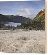 Glendalough County Wicklow Wood Print