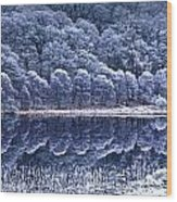 Glendalough National Park, County Wood Print by Richard Cummins