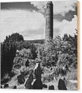 Glendalough Round Tower Ireland Wood Print