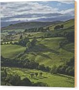 Glenelly Valley, County Tyrone Wood Print