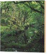 Glengarriff River, County Cork, Ireland Wood Print