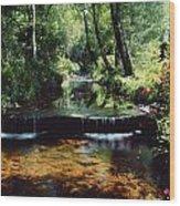 Glenleigh Gardens, Co Tipperary Wood Print