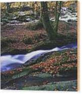 Glenmacnass Waterfall, Co Wicklow Wood Print