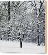 Glenna's Dogwood In The Snow Wood Print