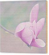 Glider Wood Print