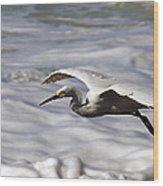 Gliding Snowy Egret Wood Print