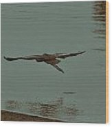Gliding Inches Above The Water Wood Print