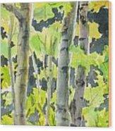 Glittering Poplars Wood Print