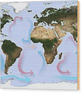 Global Ocean Currents Wood Print