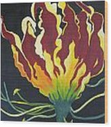 Gloriosa Lily Wood Print