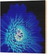 Glow Blue Wood Print