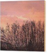 Glow Of A Winter Sunset Wood Print