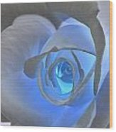 Glowing Blue Rose Wood Print