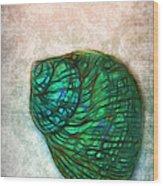 Glowing Seashell Wood Print