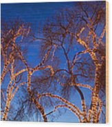 Glowing Trees Wood Print