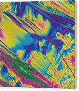 Glutamine Wood Print by Michael W. Davidson