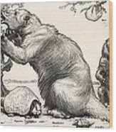 Glyptodon And Megatherium, Extinct Fauna Wood Print