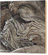 Gnarled Olive Tree Wood Wood Print