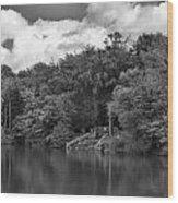 Gnoll Country Estate 2 Mono Wood Print