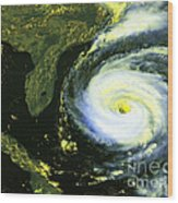 Goes 8 Satellite Image Of Hurricane Fran Wood Print by Science Source