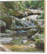 Goforth Falls Wood Print