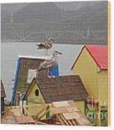 Gold Beach Gulls Wood Print