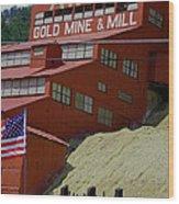 Gold In Them Thar Hills Wood Print