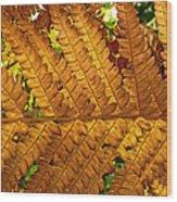 Gold Leaf Wood Print by William Fields