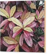 Gold Red And Purple Leaves Wood Print