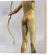 Golden Archer Wood Print