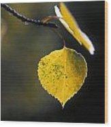 Golden Aspen Leaf Wood Print