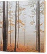 Golden Autumn Forest Wood Print