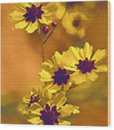 Golden Coreopsis Wildflowers  Wood Print