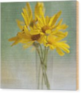 Golden Daisies Wood Print