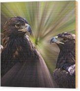 Golden Eagles Wood Print